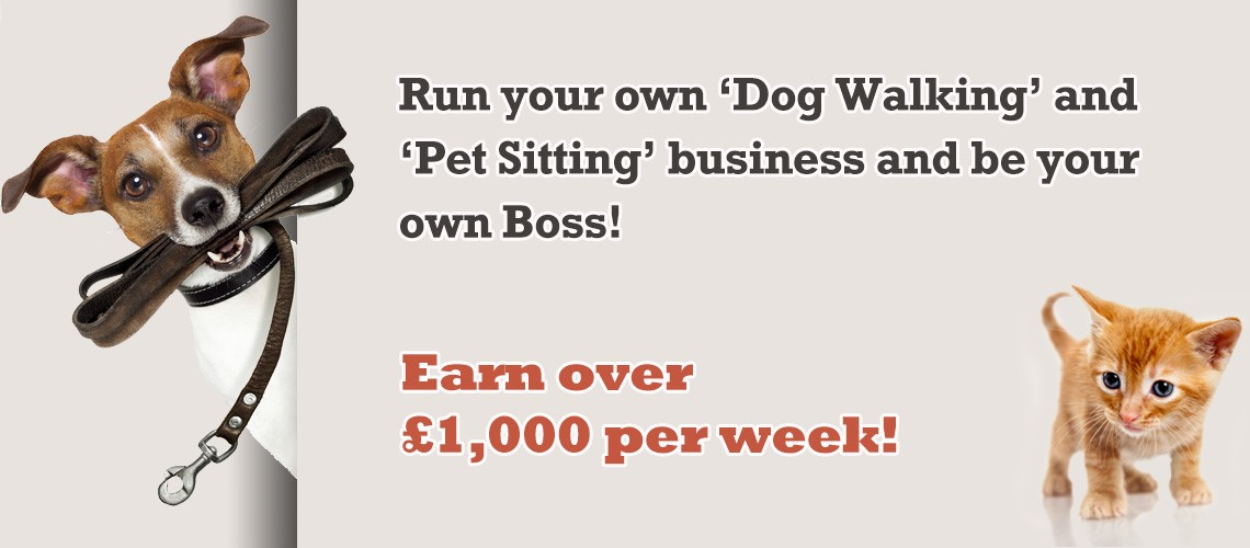 Business plan for pet sitting business